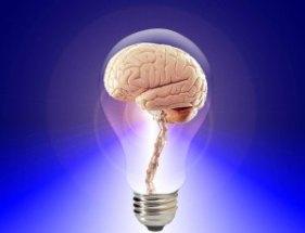 cerebro2